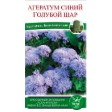 Агератум голубой шар цветы